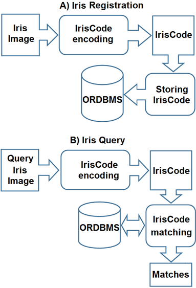 Efficient Iris Recognition Management in Object-Related